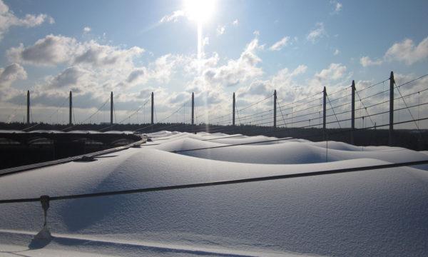 ropeworx - foto - Schnee- und Eisentfernung auf dem HSV-Stadion